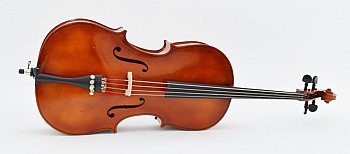 Major Brand Practice 1/2 Size Student Cello